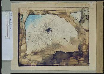 Vianden through a Spider's Web Festmény reprodukció