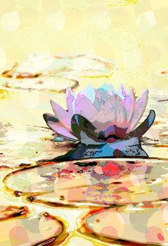 Water Lily Festmény reprodukció