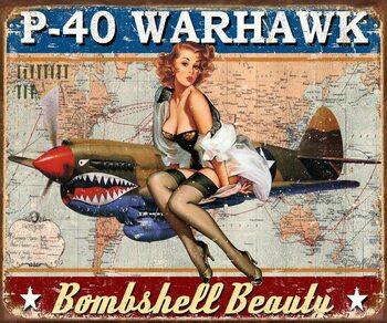 Fém tábla P-40 Warhawk