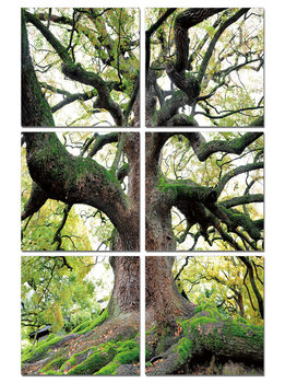 Tree of Life modern festmény