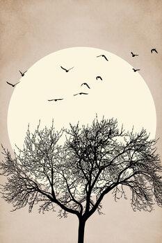 Autumn Dreamers Fotobehang