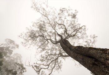 Between Heaven And Earth Fotobehang