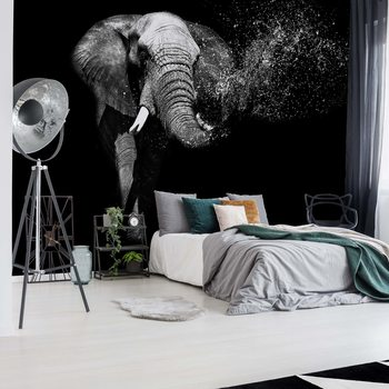Black And White Elephant Fotobehang