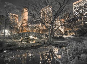 Central Park - Bridge Fotobehang