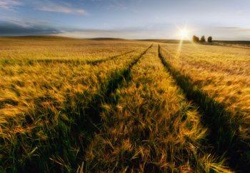 Countryside Fotobehang