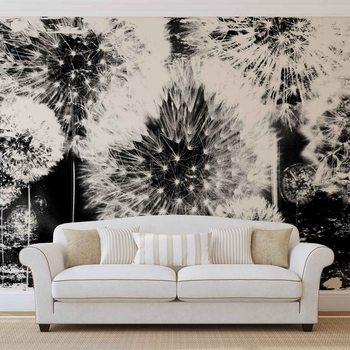 Dandelion Black White Fotobehang