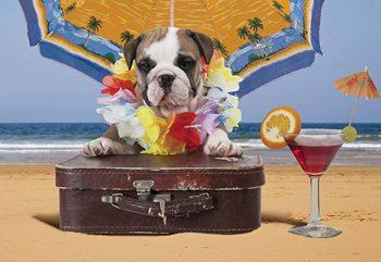 Dog Holiday Fotobehang