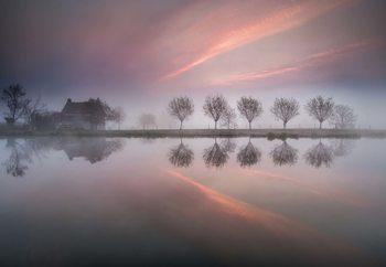 Dreamland Fotobehang