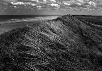 Dunes Hair Fotobehang
