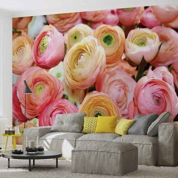 Flowers Peonies Colours Fotobehang
