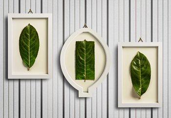 Framed Nature Fotobehang
