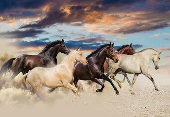 Galloping Horses Fotobehang