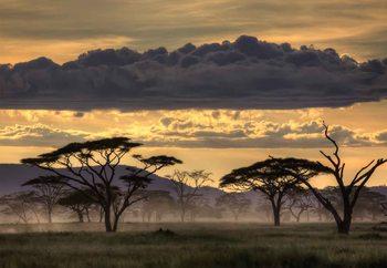 Good Evening Tanzania Fotobehang