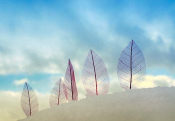 Leaves In The Snow Fotobehang