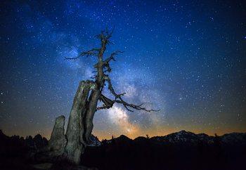Milky Way Fotobehang