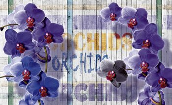 Orchids Flowers Wooden Planks Fotobehang