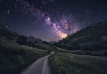 Path To The Stars Fotobehang