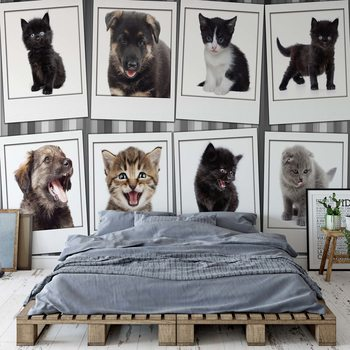 Puppies And Kittens Fotobehang