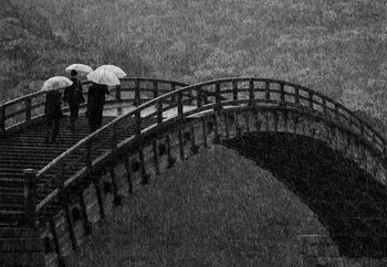 Rainy Walk Fotobehang