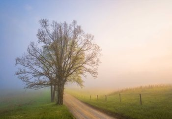 Silence Of Days Fotobehang