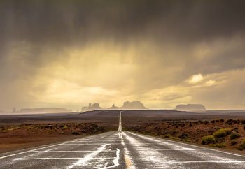 Strom In Monument Valley Fotobehang