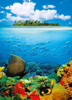 TREASURE ISLAND Fotobehang