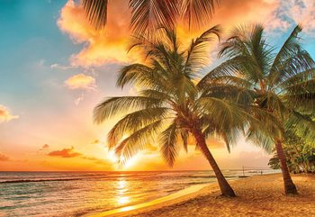 Tropical Beach Sunset Palm Trees Fotobehang
