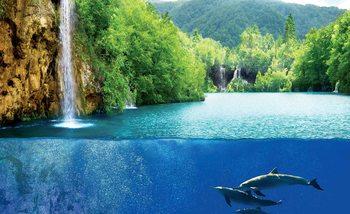 Waterfall Sea Nature Dolphins Fotobehang