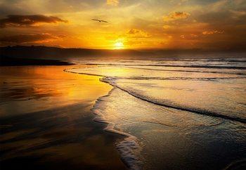 Xago Beach Fotobehang
