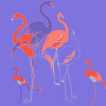 Reprodukcja Flamingoes
