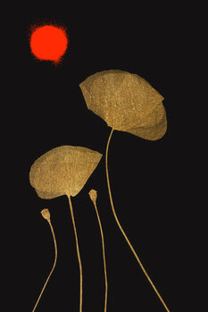 Ilustracja Midnight Lovers