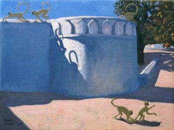 Reprodukcja Monkey Temple, India, 2000