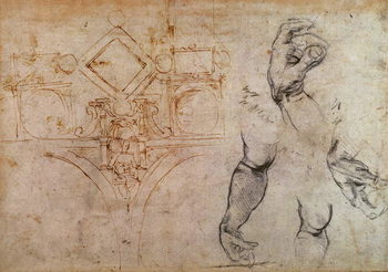 Reprodukcja Scheme for the Sistine Chapel Ceiling, c.1508