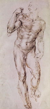 Reprodukcja Sketch of David with his Sling, 1503-4
