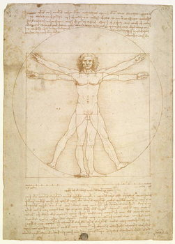 Reprodukcja The Proportions of the human figure (after Vitruvius), c.1492