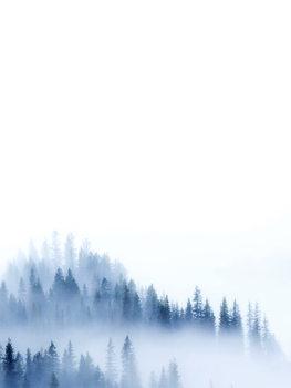 Ilustracja treeblue2