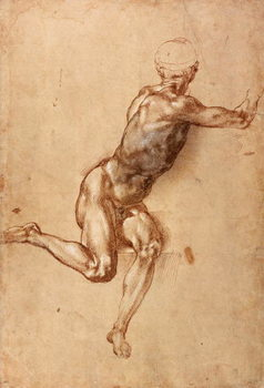 A seated male nude twisting around, c.1505 - Stampe d'arte