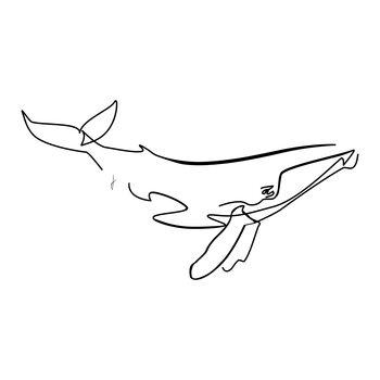 Illustrazione Balena