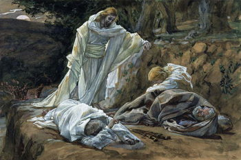 Could Ye Not Watch with Me One Hour?, illustration for 'The Life of Christ', c.1886-94 - Stampe d'arte