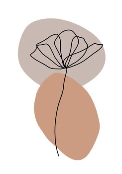 Illustrazione Flower line