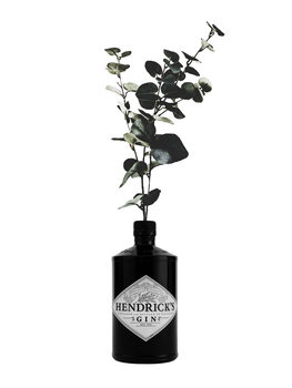 Illustrazione hendricks