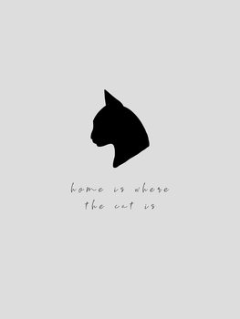 Illustrazione home is where the cat is