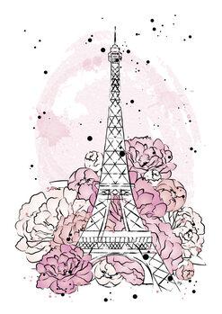Illustrazione Peony paris