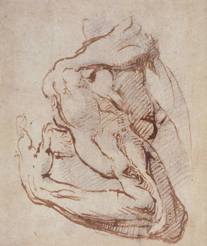 Study of an Arm (ink) Inv.1859/5/14/819 - Stampe d'arte