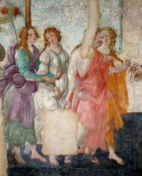 Venus and the Graces - Stampe d'arte