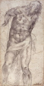 Figure Study - Stampe d'arte
