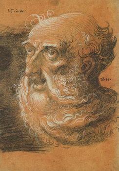 Head Study, 1522 - Stampe d'arte
