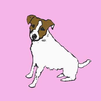 Jack russell - Stampe d'arte