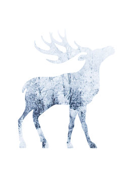 Illustrazione moosesnow1