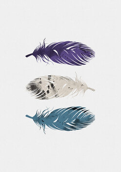 Ilustrare Blue Purple White Feathers